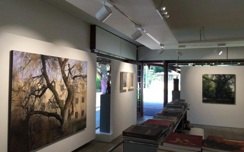 Galleria Nino sindoni personale Matteo Massagrande IMG_3357-1024x768